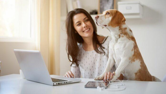 Ideias de Campanhas de Incentivo no Home Office